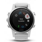 Smart Watch GARMIN Fenix 5S , Slate Silver